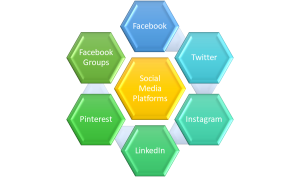 which social media platform to use