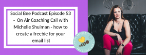Social Bee Podcast On Air Coaching call - build alead magnet with Shelly Shulman